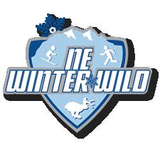 Winter Wild Mount Sunapee